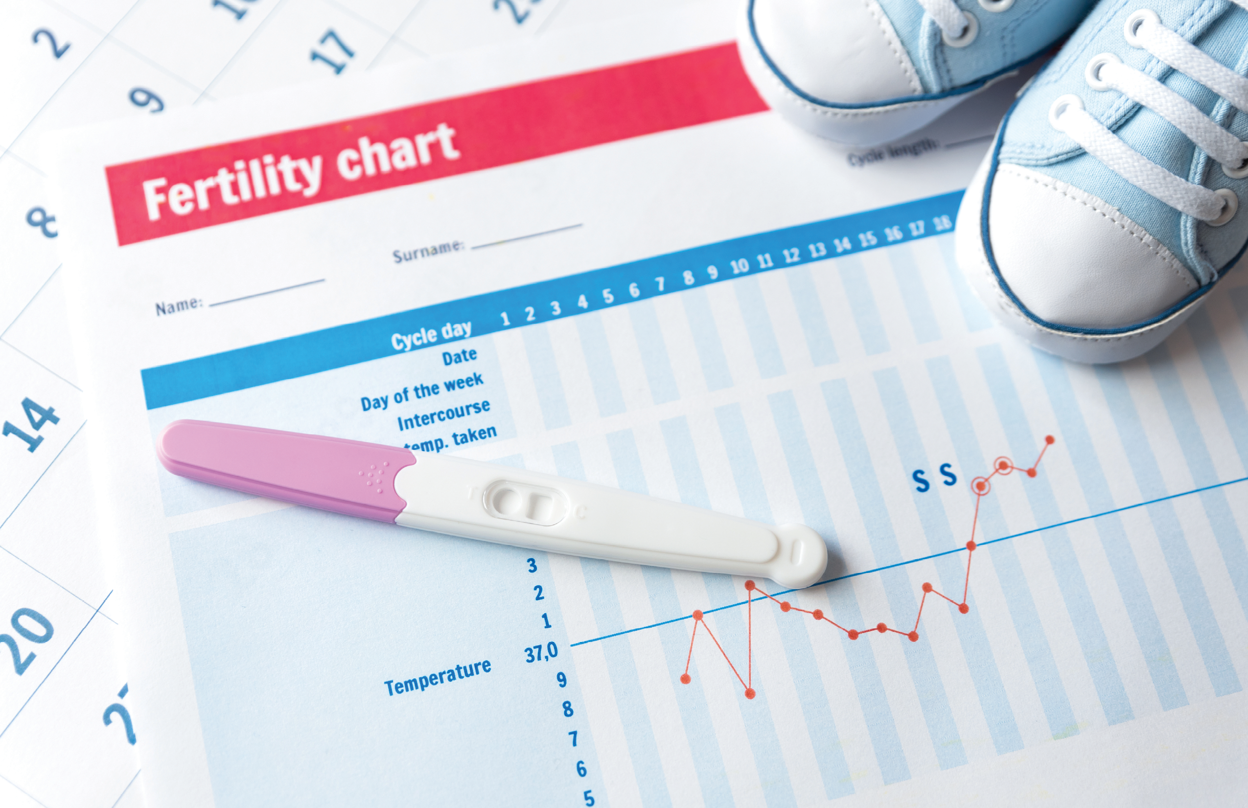 Natural Family Planning can be hard and expensive to use. Can new tech  help? | America Magazine