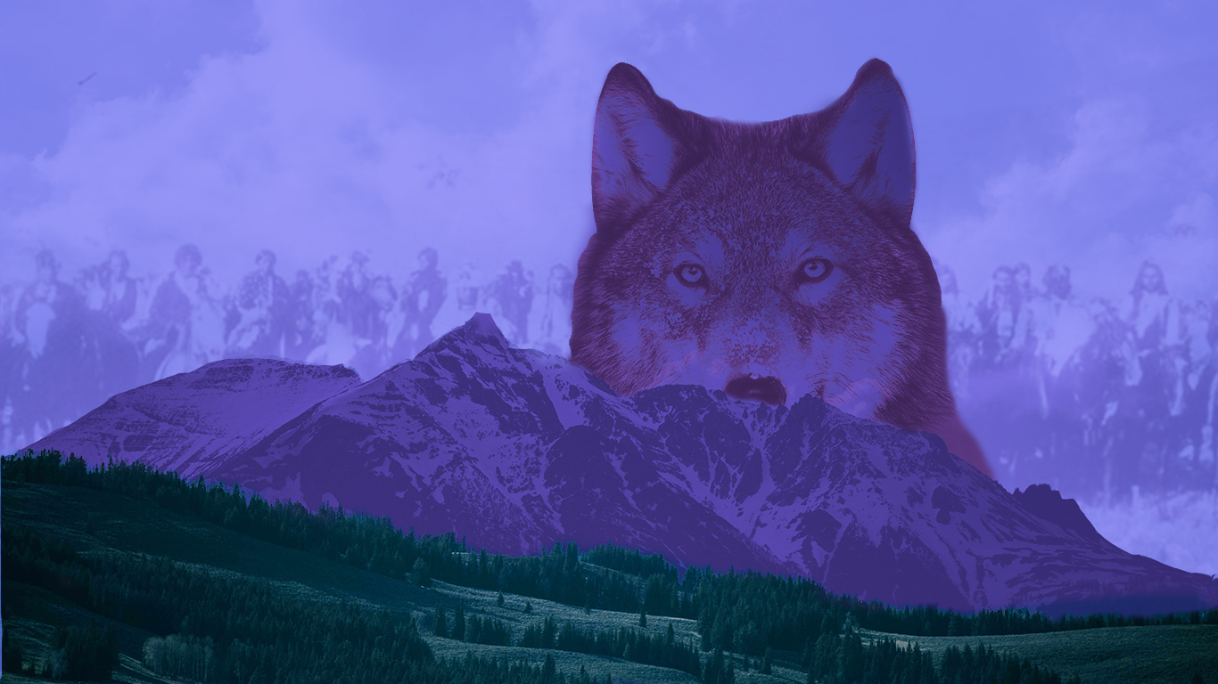 Humans And Wolves Are We More Alike Than We Think America Magazine