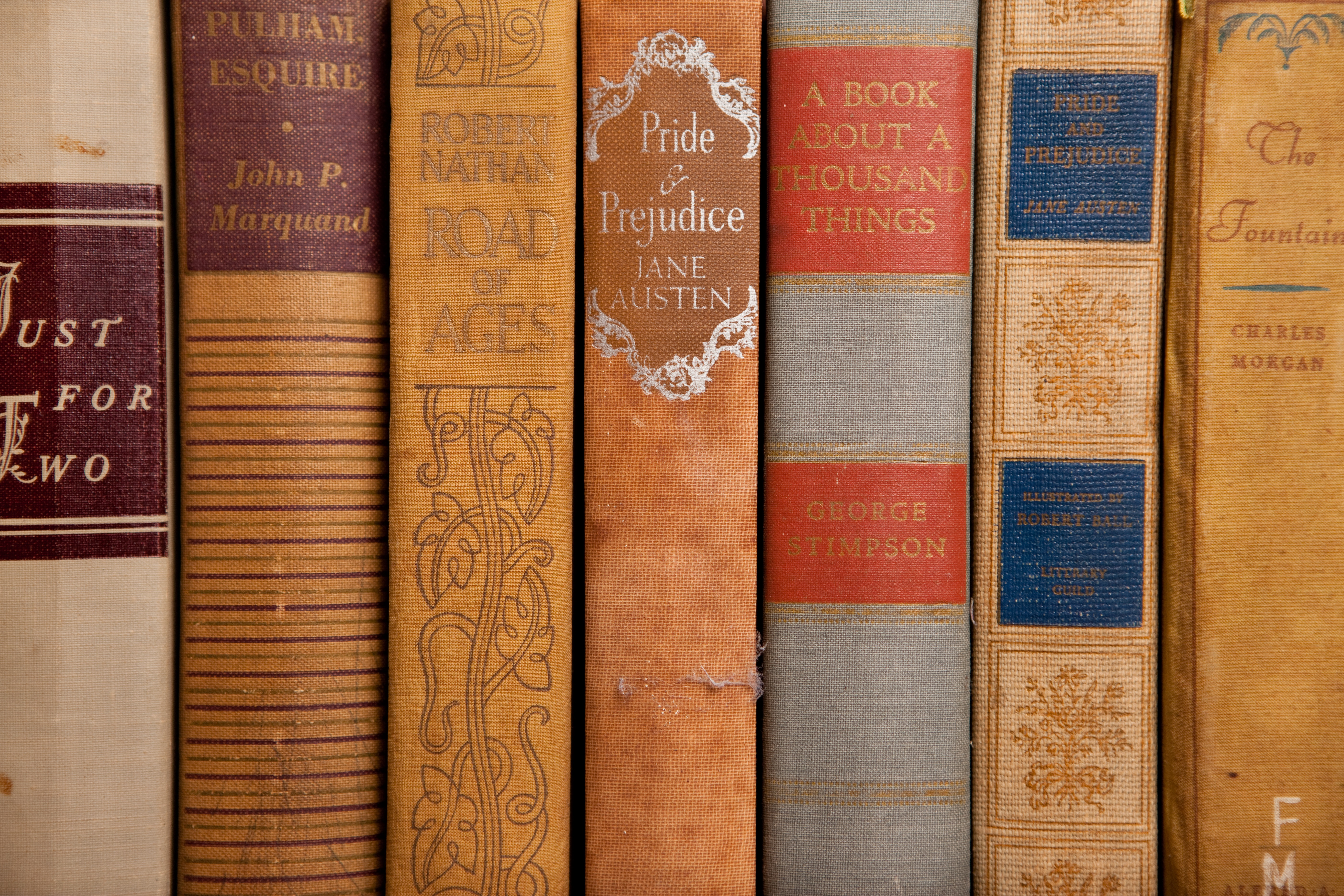 the story of love and marriage in jane austens pride and prejudice 7 characters whose names give away the story  every jane austen novel,  pride and prejudice.