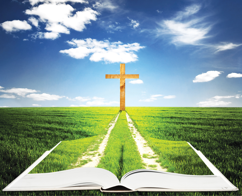 By The Book How Should Catholics Approach Bible Study America Magazine