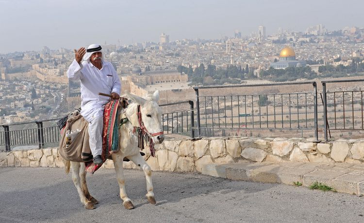 A Palestinian man rides a donkey on the Mount of Olives overlooking the old City of Jerusalem. (CNS photo/Debbie Hill)