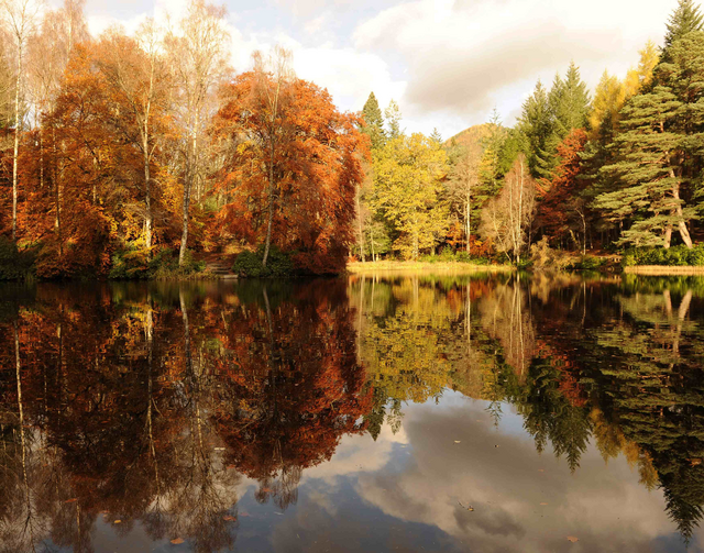Autumn leaves are reflected on Loch Dunmore in Perthshire, Scotland (CNS photo/Russell Cheyne, Reuters)