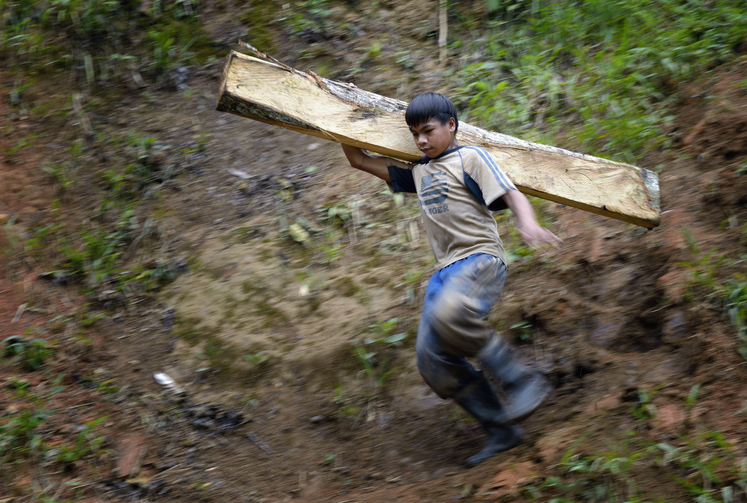 A boy carries a wooden timber destined for a mine tunnel in Pamintaran, a remote gold mining community near Maragusan on the Philippines' southern island of Mindanao.
