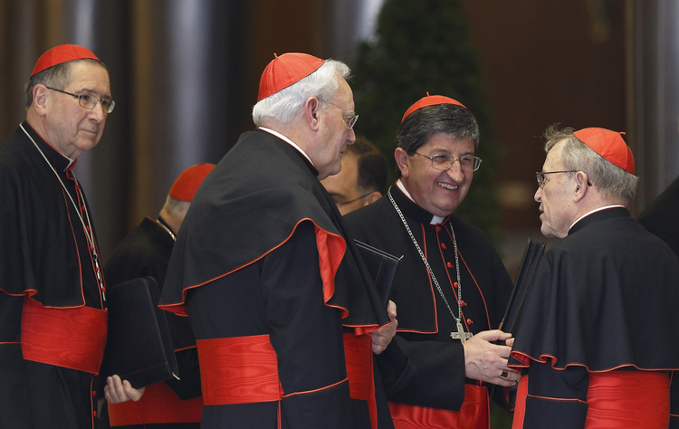 German Cardinal Kasper and other cardinals speak as they arrive for meeting with Pope Francis in synod hall at Vatican. (CNS photo/Paul Haring)