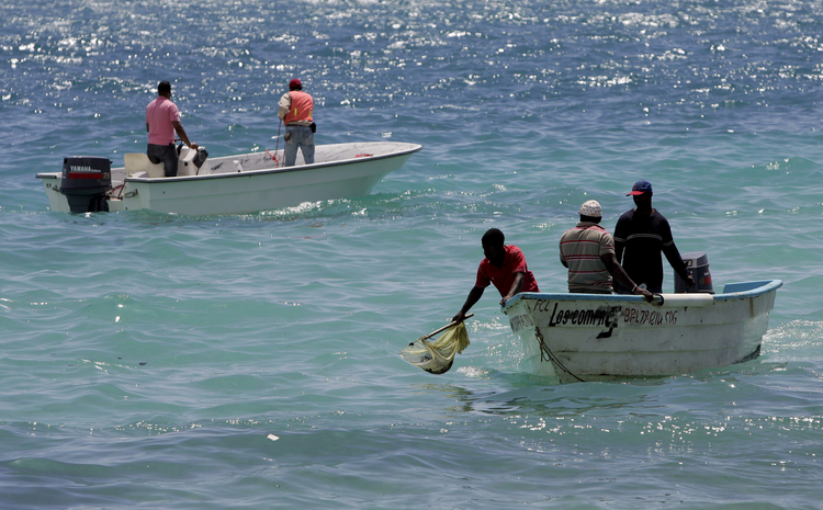 "Pope Francis' upcoming encyclical on the environment calls for ""better stewards of creation."" In 2008 environmental workers collected sea samples after an oil spill at Boca Chica, Dominican Republic. (CNS photo/Orlando Barria, EPA)"