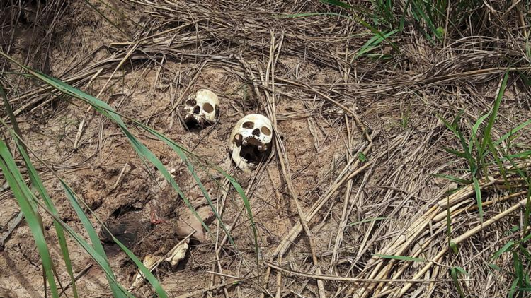 Human skulls suspected to belong to victims of a recent fight between the Congolese army and Kamuina Nsapu militia are seen on March 12 on the roadside near Kananga, Congo. (CNS photo/Aaron Ross, Reuters)
