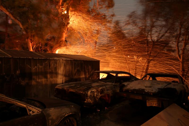 Burned cars are seen on a piece of property Dec. 5 during a wildfire near Santa Paula, Calif. Pushed by powerful Santa Ana winds, the fire spread with explosive speed to 31,000 acres in Southern California's Ventura County, forcing thousands to evacuate in the dark. (CNS photo/David McNew, Reuters)