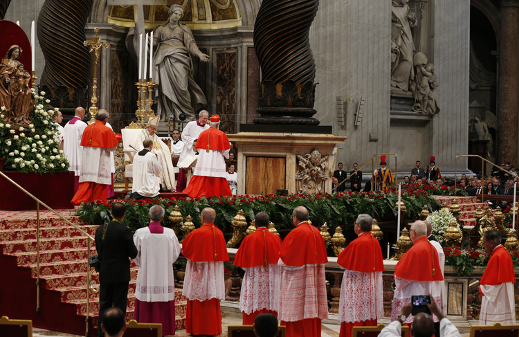 Pope Francis creates new cardinals during a consistory in St. Peter's Basilica at the Vatican on June 28. (CNS photo/Paul Haring)