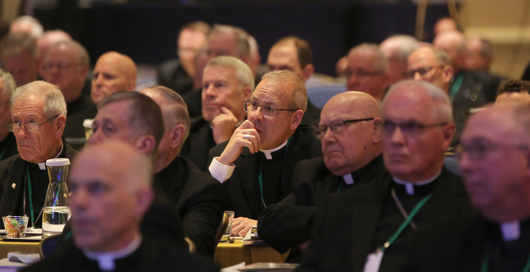 Bishops listen to a speaker on Nov. 14 at the fall general assembly of the U.S. Conference of Catholic Bishops in Baltimore. (CNS photo/Bob Roller)