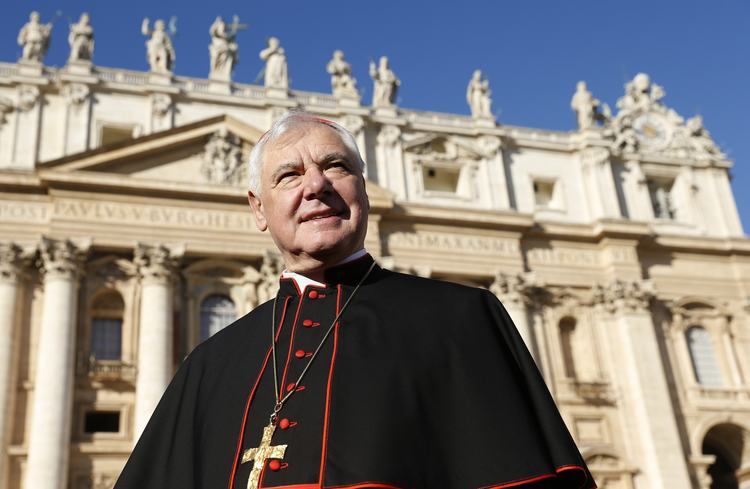 Cardinal Gerhard Muller in November 2014. (CNS photo/Paul Haring)