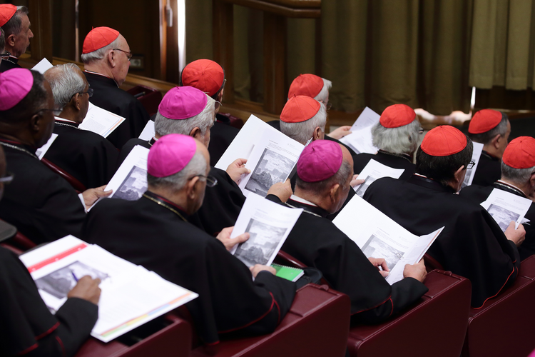Prelates attend the opening session of the meeting on the protection of minors in the church at the Vatican Feb. 21, 2019. (C