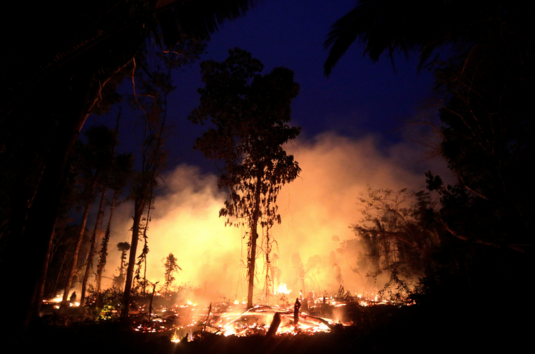 A fire burns a tract of Amazon jungle on Sept. 2, 2019, as it is cleared by a farmer in Machadinho do Oeste, Brazil. The Brazilian Catholic bishops are pressuring the government to guarantee the safety of several Amazonian indigenous peoples. (CNS photo/Ricardo Moraes, Reuters)