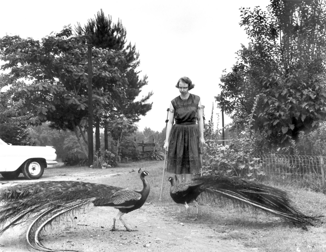 Flannery O'Connor and her peacocks (photo: Joe McTyre)