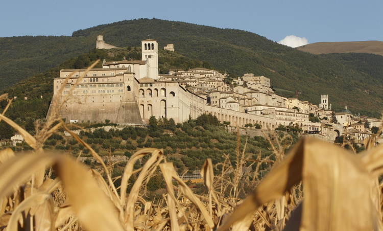 In this 2011 file photo, the Basilica of St. Francis with its bell tower is pictured beyond a field of corn in Assisi, Italy. (CNS photo/Paul Haring)