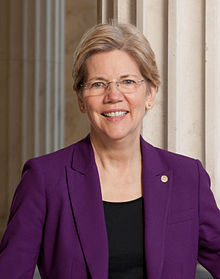 Some Democrats in Iowa are eager for the chance to be disappointed and disillusioned by a Warren presidency.