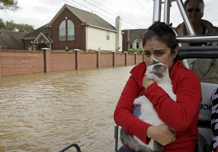 A woman holds her cat as she rides a boat out of her flooded Houston neighborhood on Aug. 29. (AP Photo/Charlie Riedel)