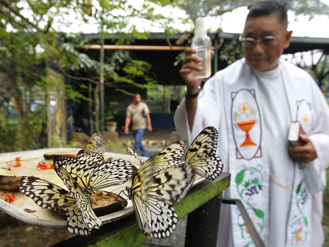 A priest sprinkles holy water on butterflies during the blessing of the animals in Manila, Philippines, 2012.