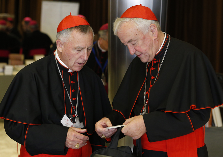 Cardinals John Dew of Wellington, New Zealand, and Vincent Nichols of Westminster, England, talk before a session of the Synod of Bishops on the family at the Vatican, Oct. 22 (CNS photo/Paul Haring).