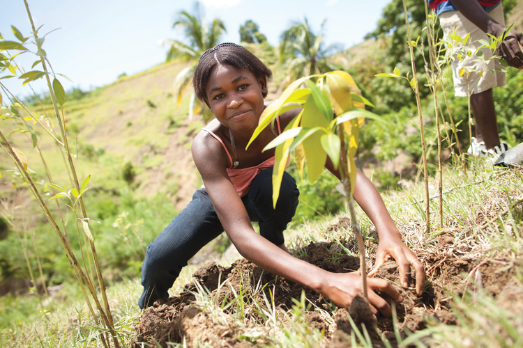 GOOD GROWTH. Fedlen Philio plants a mango tree with a youth group that encourages sustainable development in Kafou Kols, Haiti.
