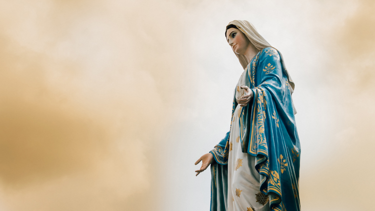 The Assumption of Mary tells us who we are meant to be