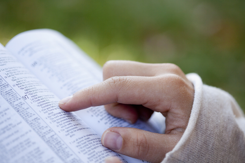United by the Word: Finding common ground in lectio divina