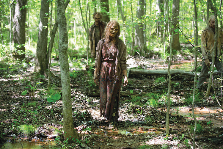 "OUT OF THE WOODS? Walkers on ""The Walking Dead"""