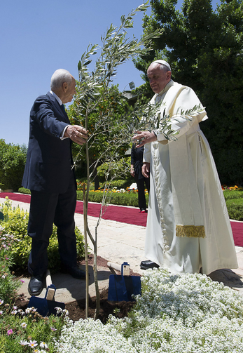 Pope Francis and Israel's President Shimon Peres talk after planting an olive tree as a symbol for peace after their meeting at the president's residence on May 26.