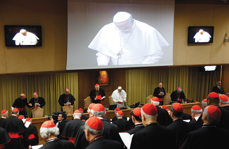 CLUTCH OF CARDINALS. Cardinals discuss reform of the Roman Curia before the consistory on Feb. 14.