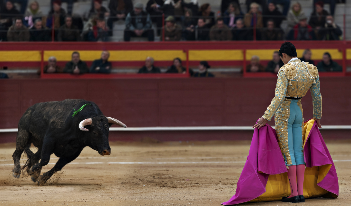 What I learned about my Catholic faith from watching a bullfight ...