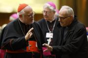 Cardinal Reinhard Marx of Munich-Freising, president of the German bishops' conference, talks with an unidentified delegate as they leave the final session of the Synod of Bishops on the family at the Vatican Oct. 24. (CNS photo/Paul Haring)