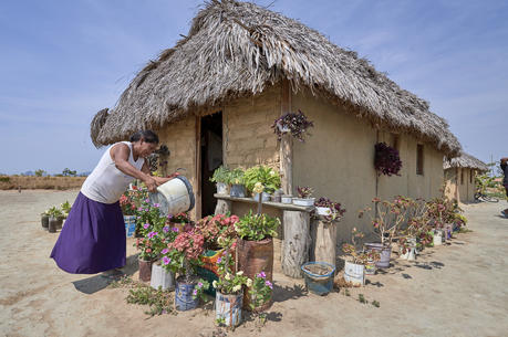 Celestina Fernandes da Silva, a Catholic activist, waters flowers in front of her home in the Wapishana indigenous village of Tabalascada, Brazil, on April 3, 2019. (CNS Photo/Paul Jeffrey)