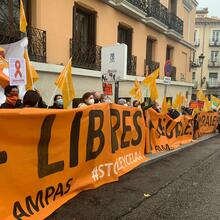 Demonstrations in November were conducted all over Spain against the 'Ley Celaá.' Photo courtesy of Mas Plurales.